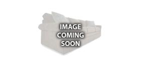 Lexington Furniture Logo